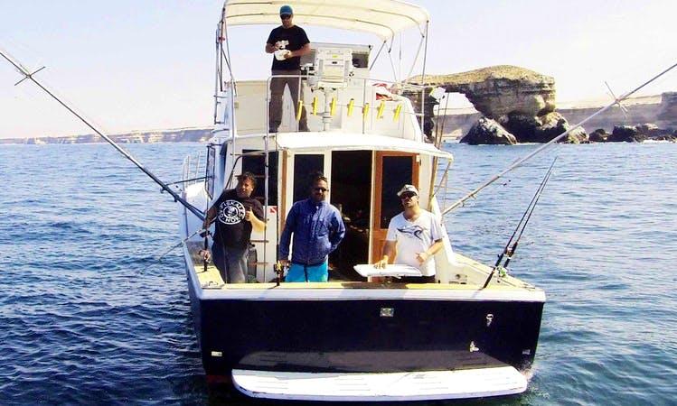 39' Chris-Craft Commander Fishing Charter in Antofagasta