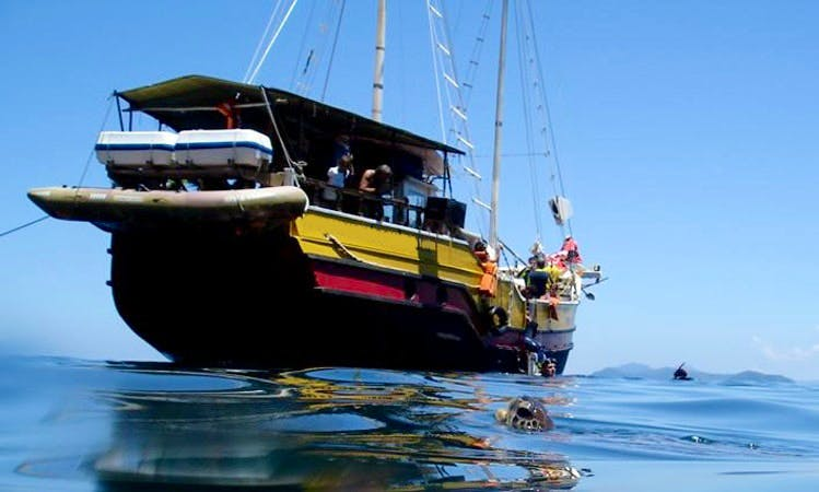 4-Hours Sailing Gulet Cruise in Florianopolis, Brazil