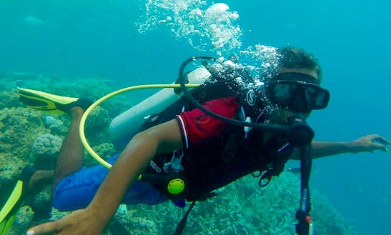 Enjoy Diving Trips And Courses In Malé, Maldives