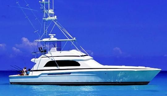 Go Fishing In Dubai United Arab Emirates On A Sport Fisherman