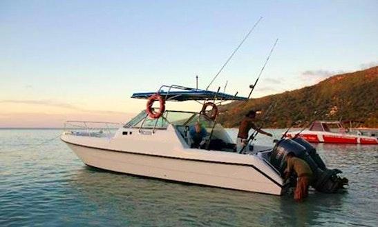 Enjoy Fishing In Victoria, Seychelles On Dolphin Nemo Ll Cuddy Cabin
