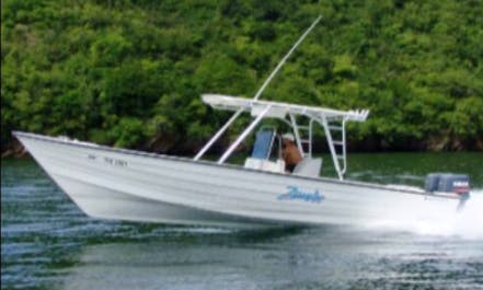 Enjoy Fishing in Port of Spain, Trinidad and Tobago on Center Console