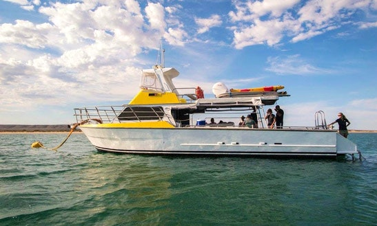 Boat Snorkeling & Eco Tours In Rottnest Island