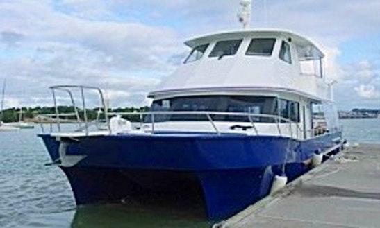 Enjoy 'dream Weaver' Catamaran Private Charter In Auckland, New Zealand