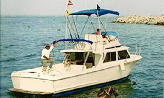 28ft California Sport Fisherman In Cabo San Lucas, Mexico