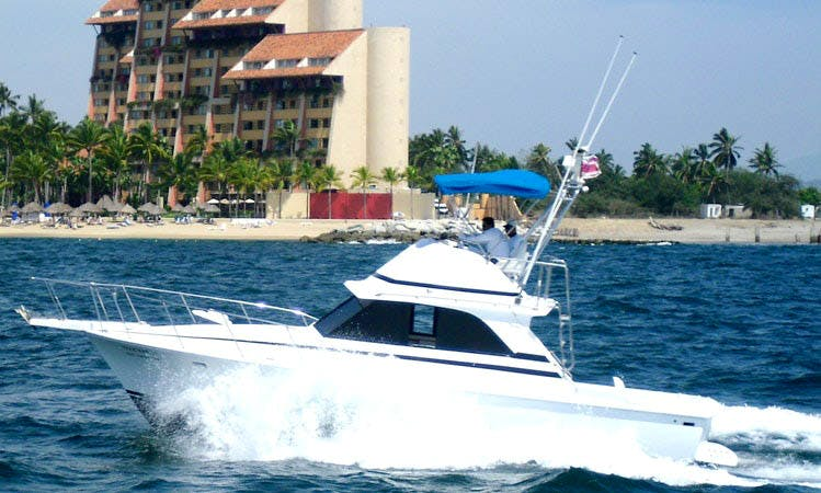 "Fishing Charter 38ft ""Nicole"" Sport Fisherman In Puerto Vallarta, Mexico"