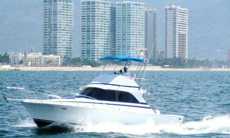 "Fishing Charter 38ft ""Nicole"" Sport Fisherman In Puerto Vallarta, Mexico"