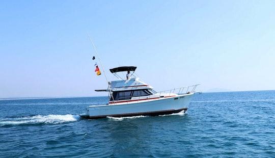 Ixtapa Zihuatanejo Fishing Charter For 6 People