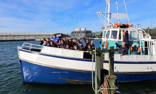 54' Passenger Boat Trips In Dunedin, New Zealand