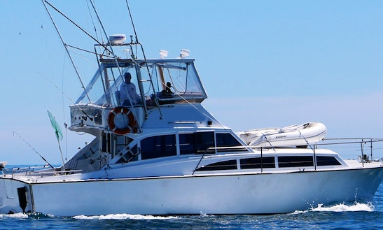 38' Sportfishing Charter In Opua, New Zealand