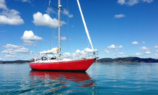 Sloop Sailing Charters In Russell, New Zealand