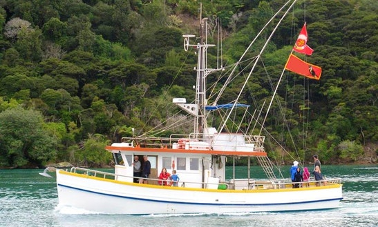 46' Fishing Charter In Northland