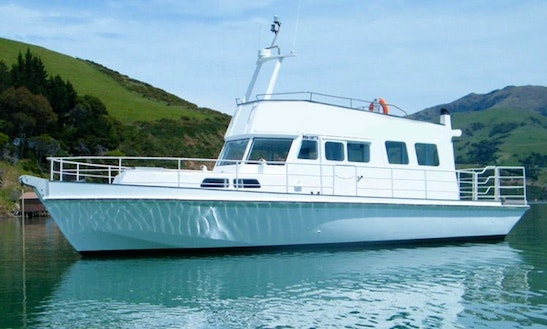 Explore Canterbury, New Zealand On This Lovely Boat