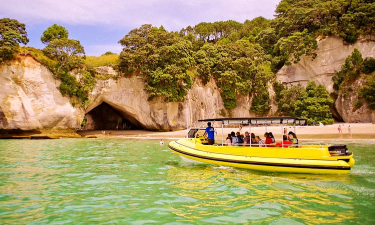 The Whirlwind Boat Tours in Whitianga
