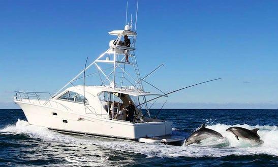 'matariki Nui' Luxury Sport Fishing Yacht In Auckland