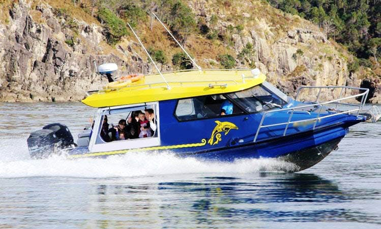 Luxury Charter in New Zealand