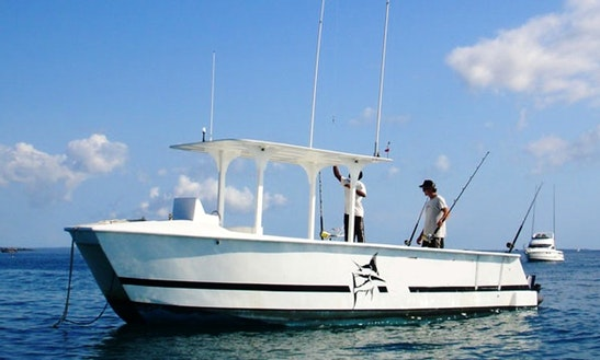 Reef Jumper 27 'surreel' Power Catamaran Charter In Zanzibar