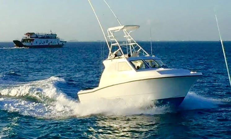 """Andrea M"" 34' Head Boat, Fishing Charter in Isla Mujeres, Mexico"
