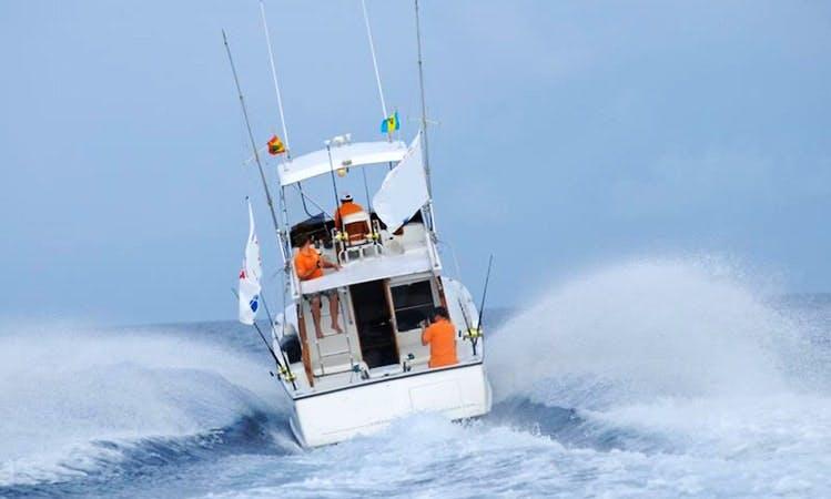 31' Sport Fisher Yacht Charter in Grenada