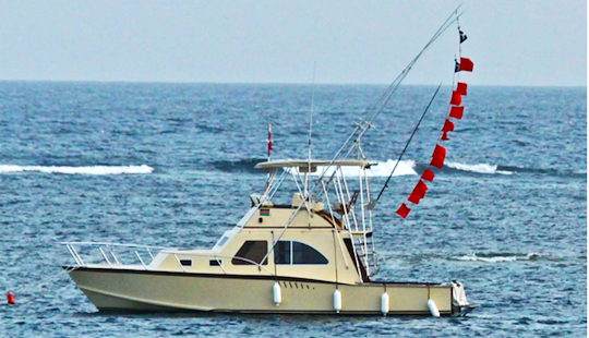 Charter Fishing In Mombasa, Kenya On 38' Sport Fisherman