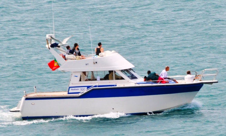 Cascais Fishing Charter for 10 Person with Experienced Crew