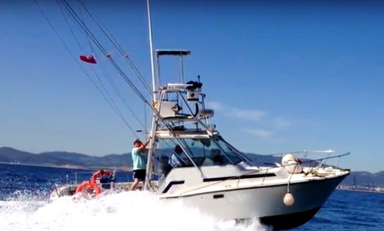 Enjoy Fishing in Gibraltar on Ocean Dancer Sport Fisherman