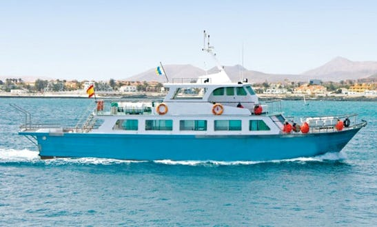 Glass Bottom Boat Minicruise To Lobos Island