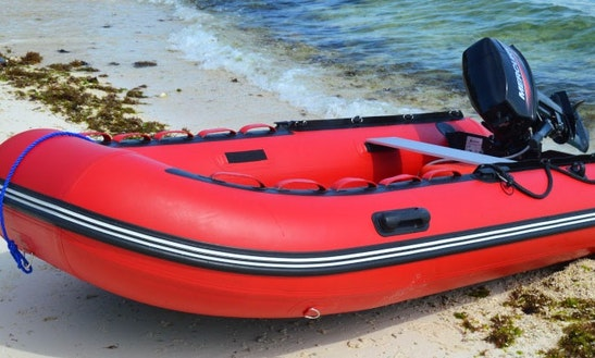 Rent A Rigid Inflatable Boat In Anda, Philippines