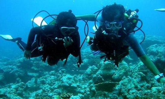 Experience Diving In Malvan, Maharashtra