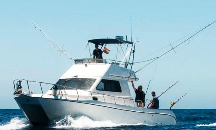 Sport Fisherman Charter in San Bartolomé de Tirajana