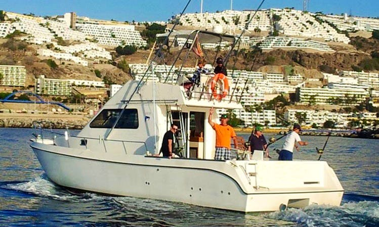 Cata 356 Fishing Charter in Calle Puerto Base