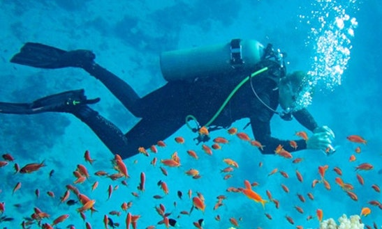 Enjoy Diving In Port Blair, Andaman And Nicobar Islands