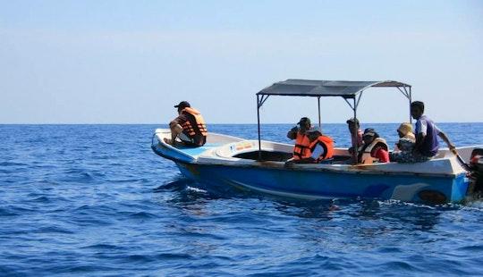 Explore Kalpitiya, Sri Lanka By Outboard Boat Charter