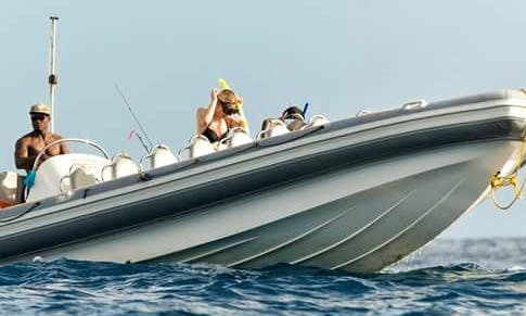 Charter a Rigid Inflatable Boat in Le Morne, Mauritius