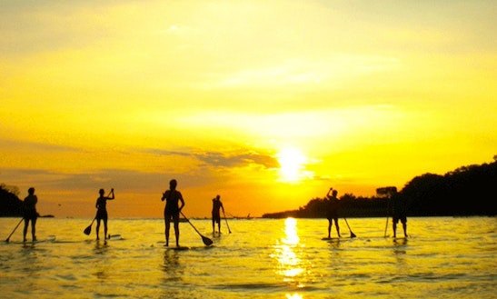 Enjoy Stand Up Paddleboard Trips In Quepos, Costa Rica