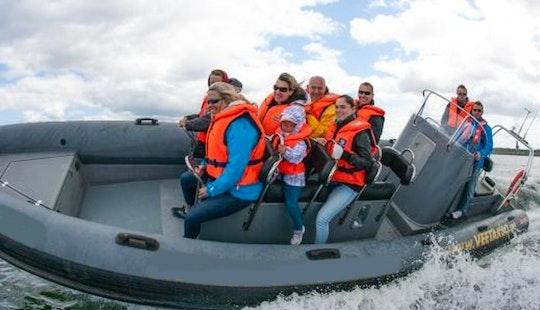 Rib Launches And Sea Safari In Tallinn