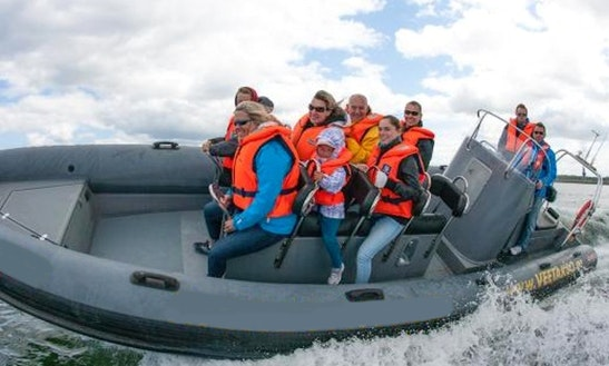Rib Launches And Sea Safari In Tallinn
