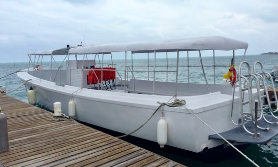 Passenger Boat Rental In West Bay