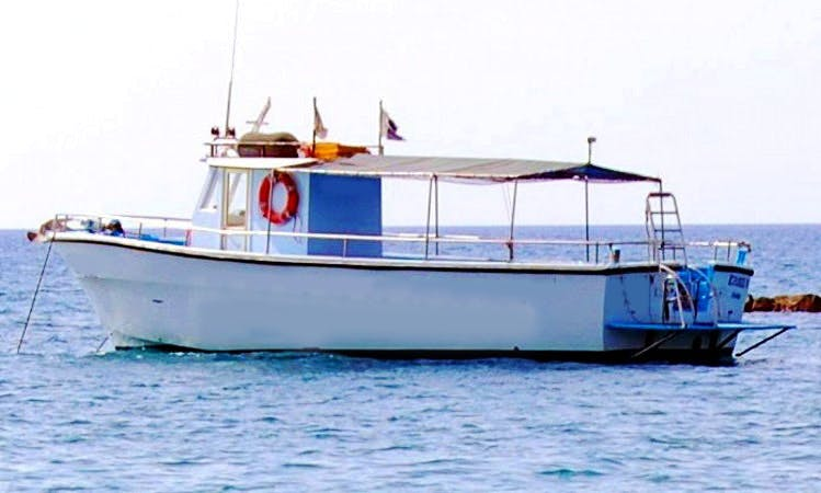 Dive Charters and Courses in Limassol
