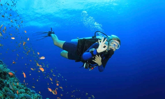 Enjoy Scuba Diving In Potrero, Costa Rica
