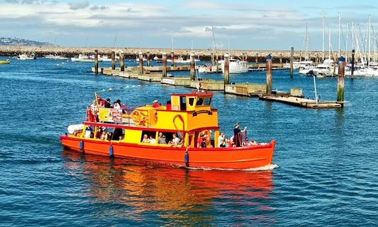 2.5 Hours Catch And Cook Evening Cruise From Brixham, England