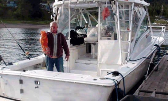 35' Sport Fisherman Charter In Juneau, Alaska