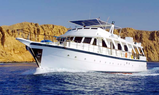 7 Night Red Sea Diving Charter In Egypt