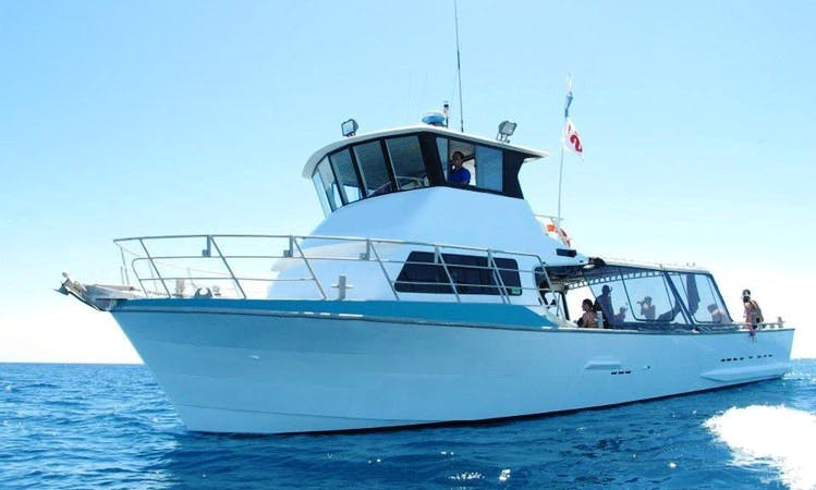 Crewed Charter on 60ft   in Fremantle