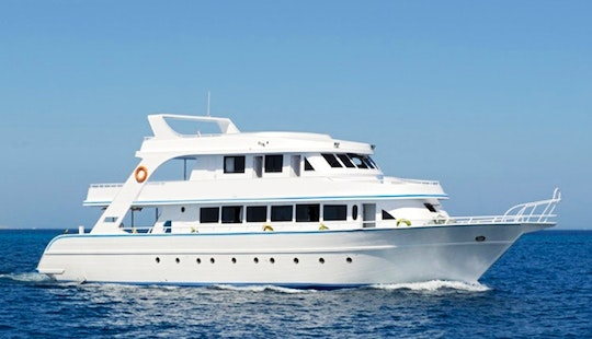 M/y New Francesca Diving Boat Tour In Hurghada