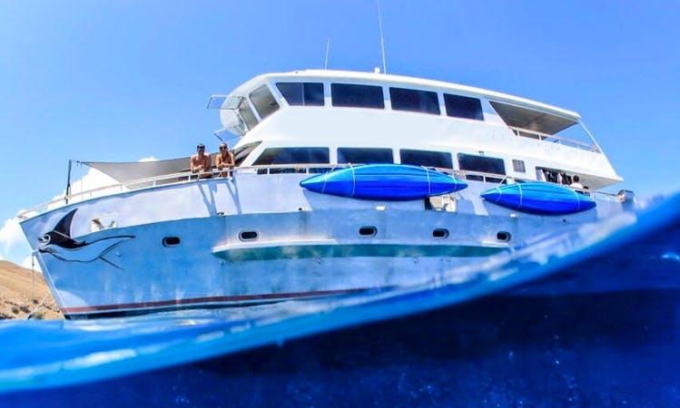 70' Power Catamaran Charters in Komodo, Indonesia
