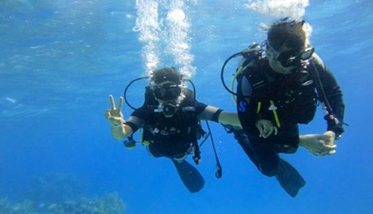 Padi Divng Courses In South Sinai