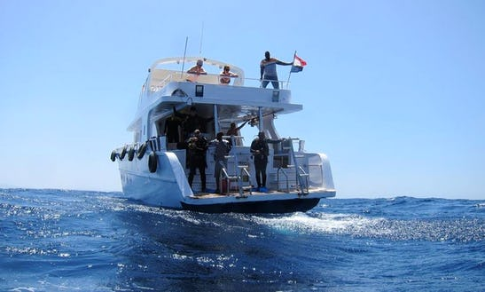 Motor Yacht Diving Trips In Mashraba, Egypt