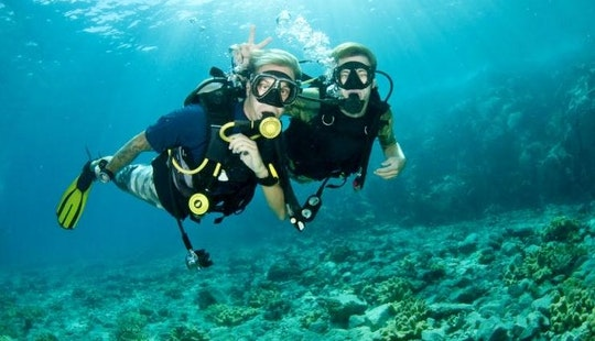 Enjoy Diving In Muang Pattaya, Thailand
