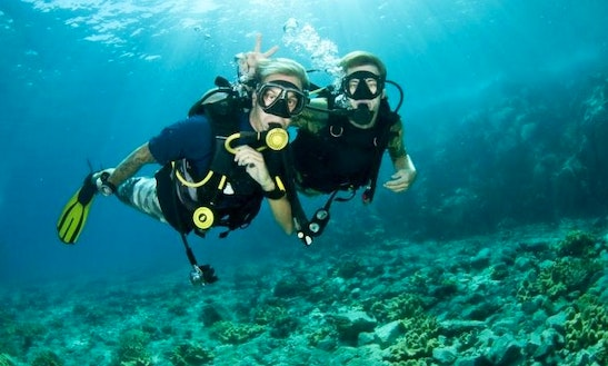 Enjoy Diving In Muang Pattaya, Thailand